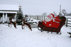 Santa at Mainsgill Farm