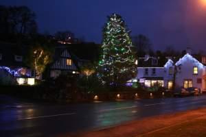 Christmas Tree at Glenisle Hotel, Lamlash