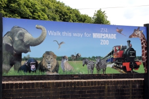 The car park entrance to ZSL Whipsnade Zoo