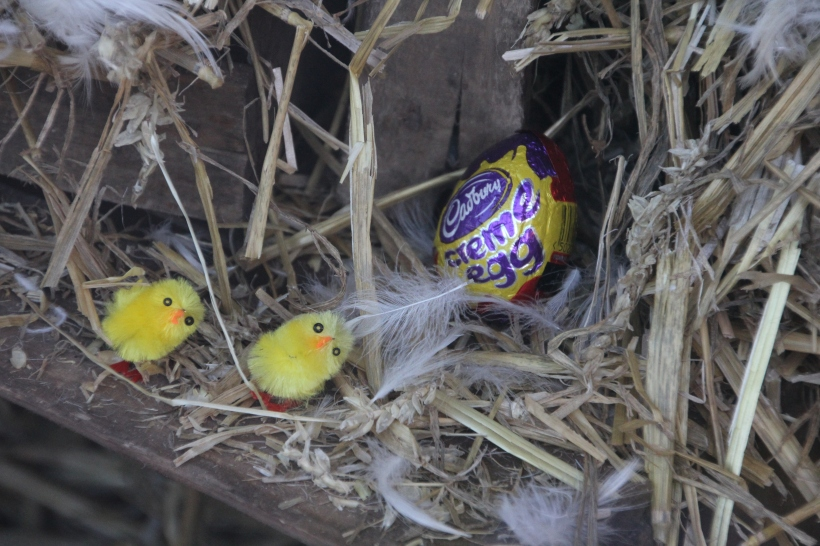 Easter Window at Glosters