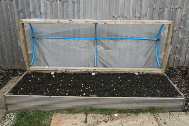 Winter planted onions, Garlic and Shallots