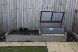 Cold Frame (before moving)