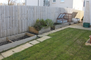 Back Garden before raised bed moving