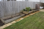 Raised beds after moving