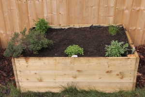 Herb Bed (as initially planted)
