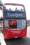 Hop-on, Hop-off Bus
