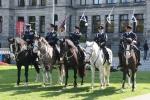 Horses on Parade