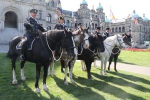 Horse borne contingent
