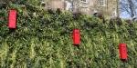 Post box wall
