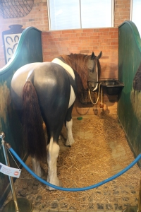 Example horse stall