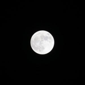 Full Moon on New Years Day