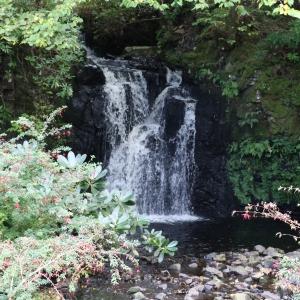 Waterfall in Dunvegan Gardens